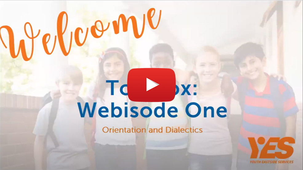 Dialectical Behavioral Therapy Webisode 1 Orientation and Dialectics