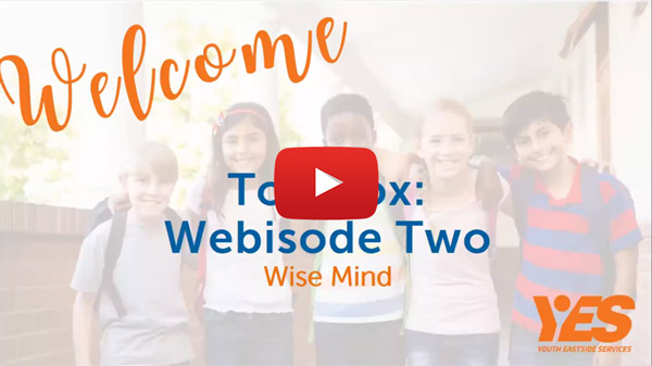 Dialectical Behavioral Therapy webisode 2 wise mind