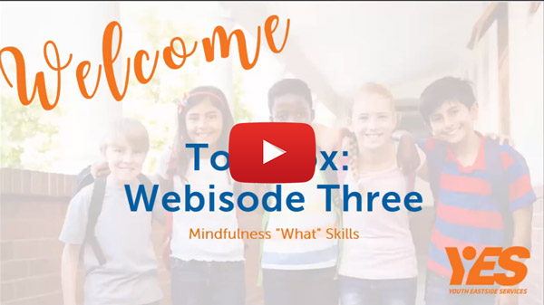 dialectical behavioral therapy webisode 3 mindfulness what skills