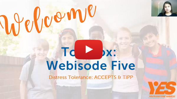 Dialectic behavior therapy webisode five distress tolerance accepts and tipp